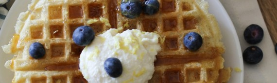 Gluten Free Yeasted Buttermilk Waffles