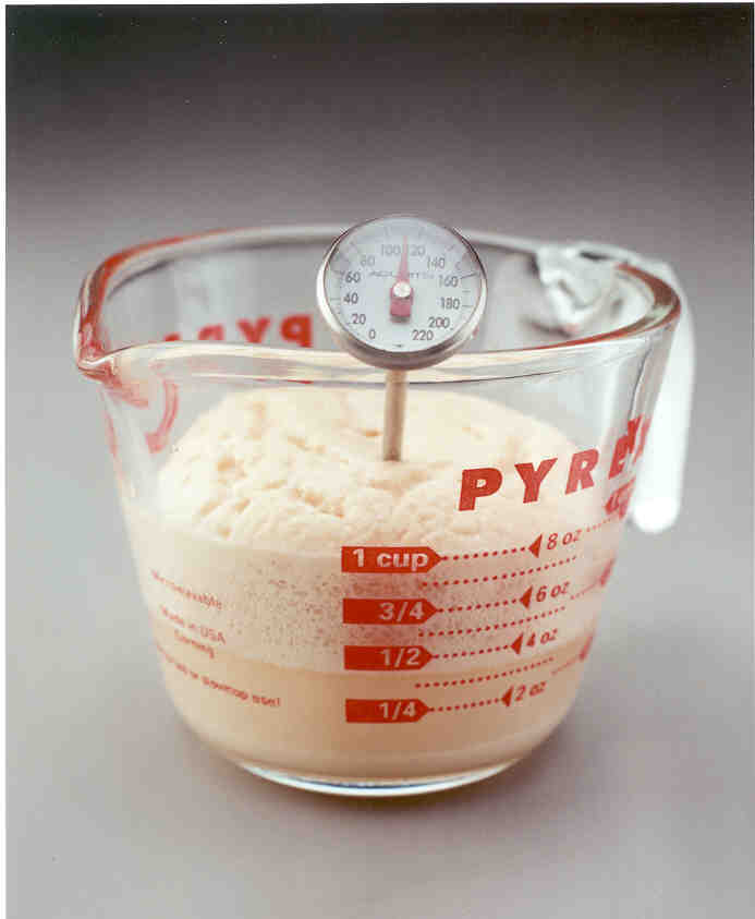 Yeast Amp Baking Lessons Yeast Freshness Test Red Star Yeast