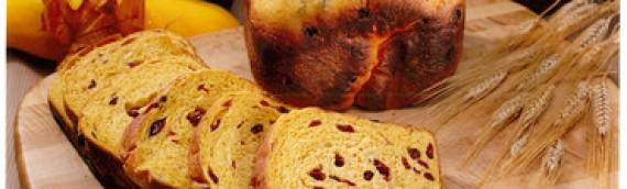 Craisin Bread