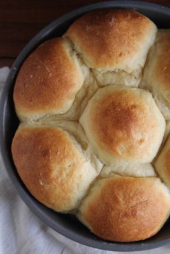 Fluffy No Knead Refrigerator Rolls | The fluffiest dinner rolls comes from the easiest no-knead dough. Find recipe at redstaryeast.com.
