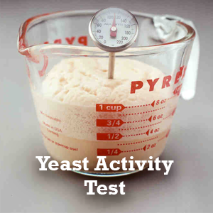 Yeast Activity Test